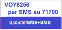 Voyance SMS amour
